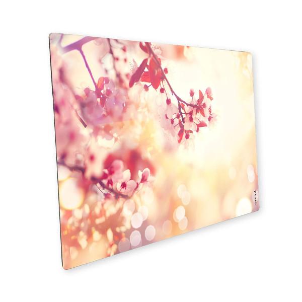 Pop Blütentraum 1