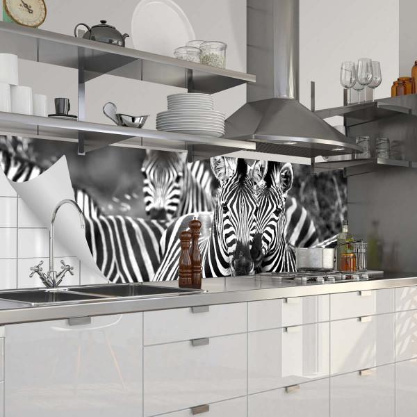 Fixy Zebra Herde 2