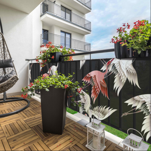 Balcony Airi